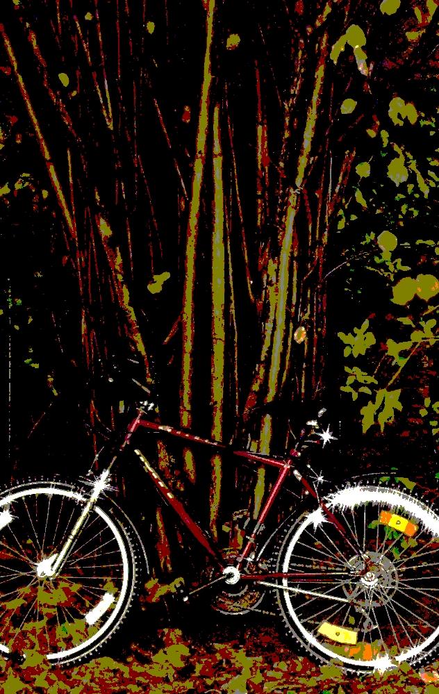 psychodelisches Fahrrad 1